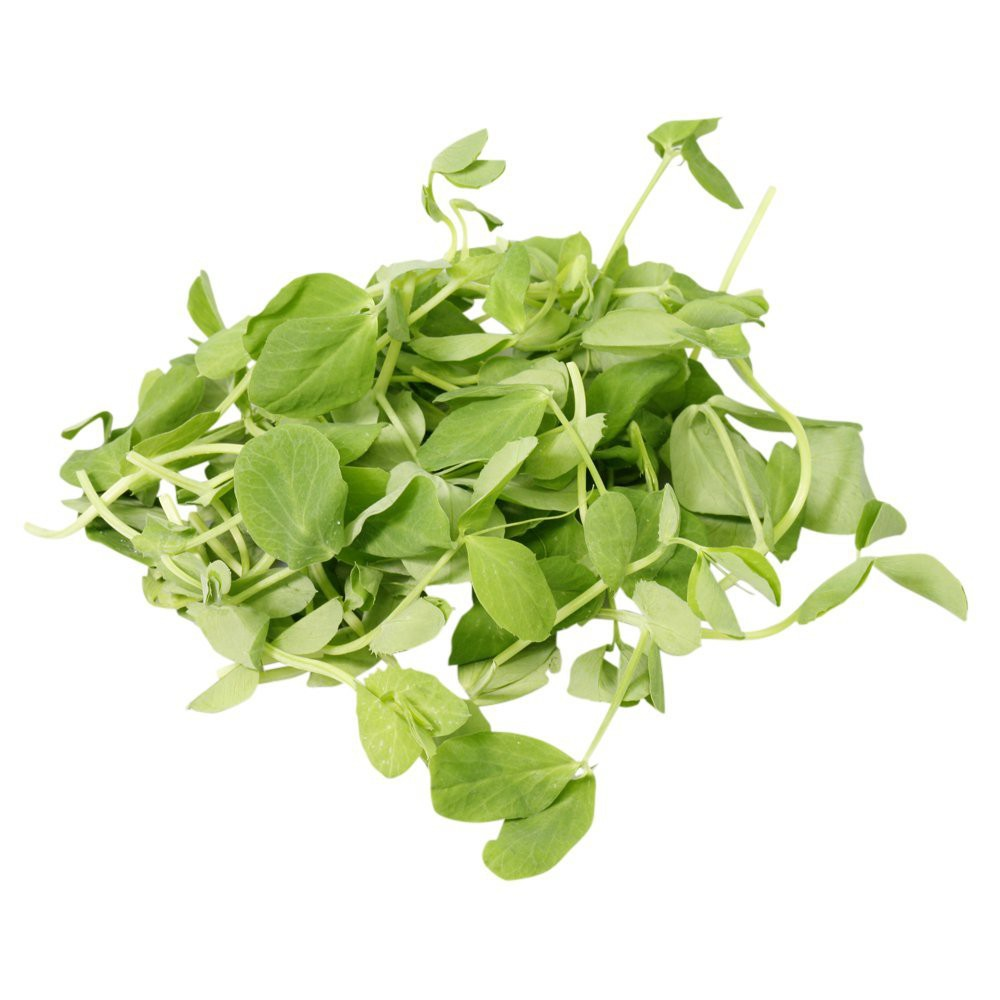 Micro Tendril Pea Shoots 100g
