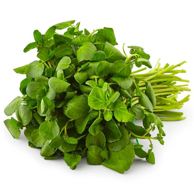 WATERCRESS P/P